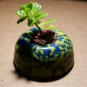 Proyecto MUTAN mini macetas azul